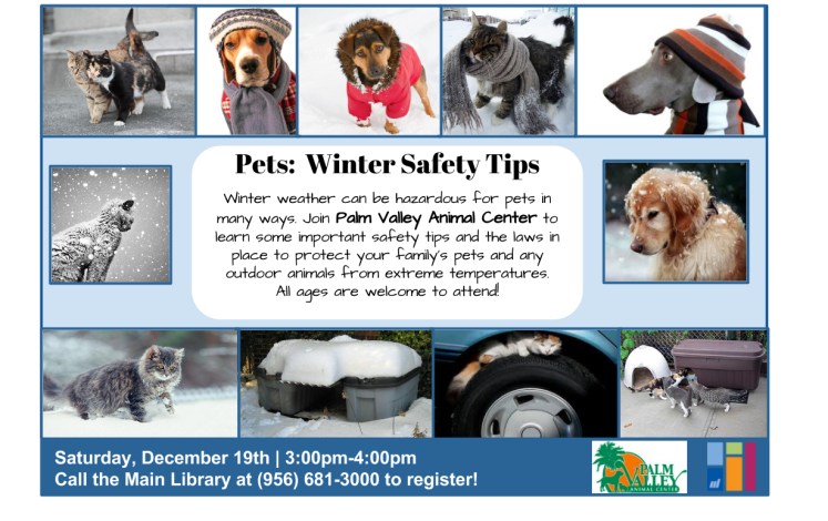 Winter Pet Program final